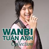 Tuyn Tp Cc Bi Ht Hay Nht Ca Wanbi Tun Anh - Wanbi Tun Anh