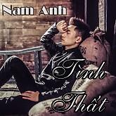 Album Tình Thất - Nam Anh
