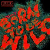 Album Born To Be Wild - Triple T