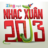 Tt on Vin (Nhc Xun 2013)