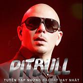 Tuyển Tập Các Bài Hát Hay Nhất Của Pitbull
