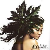 Âm Bản - Đoan Trang