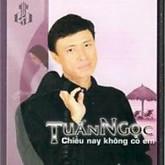 Album Chiều Nay Không Có Em