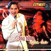 Album Bông Hồng Cài Áo