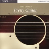 Pretty Guitar Vol3 -  Livin G