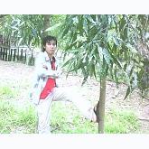 Playlist Tan Co_Thanh Sang