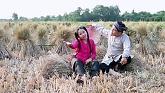 Video Bức Họa Đồng Quê - Martin Garrix,Bebe Rexha