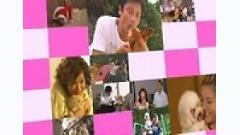 Khi Chó Yêu Mèo OST - Lương Gia Huy,Hồ Hạnh Nhi