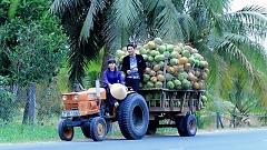 Video Thương Cô Gái Bên Tre - Phương Lan, Khang Lê