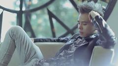 Video Người Yêu Tuyệt Vời - Trịnh Thăng Bình