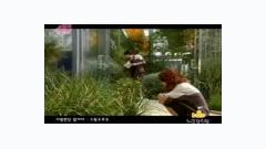 Video Sarang Han Da Mar I Ya (Bad Couple OST) - Sweet Sorrow