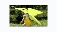 Chim Non Lễ Phép - Minh Hoàng