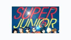Super Man + Mr.Simple (110815 MBC Incheon Korea Music Wave 2011) - Super Junior