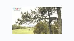 Vẽ (Trailer) - Vĩnh Thuyên Kim