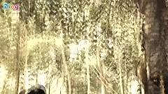 Hồn Quê - Mỹ Hạnh ft. Trương Thanh