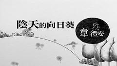 Video 陰天的向日葵 / Hoa Hướng Dương Của Ngày Âm U - Vi Lễ An