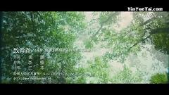 致青春 / Gửi Thanh Xuân - Vương Phi