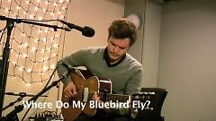 Video Where Do My Bluebird Fly (Live On KEXP) - The Tallest Man On Earth
