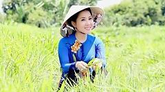 Xuân Sang Cho Má Em Hồng - Cẩm Như