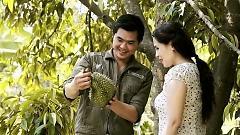 Hương Sầu Riêng Muộn - Nguyễn Phú Quý  ft.  Thùy Dương
