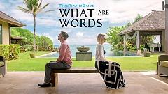 Video What Are Words - Evynne Hollens , The Piano Guys