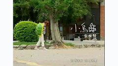 小乌龟 / Rùa Con - Trương Đông Lương