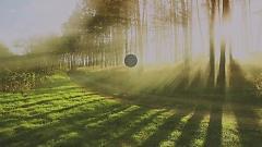 Spring (Xuân) - Hải Ninh