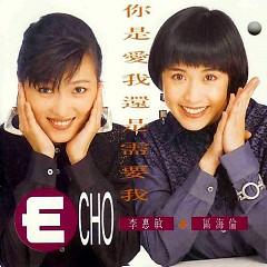 Lời bài hát được thể hiện bởi ca sĩ ECHO
