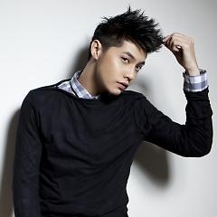 Lời bài hát được thể hiện bởi ca sĩ Noo Phước Thịnh ft. Tonny Việt