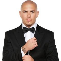 Nghệ sĩ Pitbull