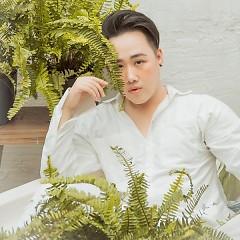 Nghệ sĩ Trung Quân Idol