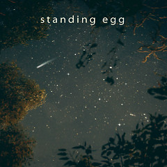 Starry Night - Standing Egg