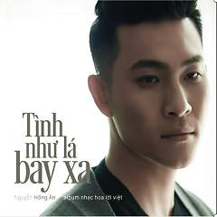 Album  - Nguyễn Hồng Ân