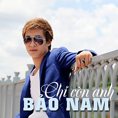 Album Chỉ Còn Anh (Single) - Bảo Nam