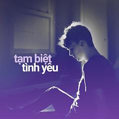 Tạm Biệt Tình Yêu - Various Artists