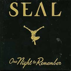 One Night To Remember - Seal