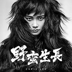Album  - Lý Vũ Xuân
