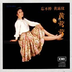 Album 忘不掉/ Can't Forget - Hoàng Oanh Oanh