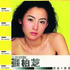 全新经验/ Quan Xin Jing Yan (CD2) - Trương Bá Chi