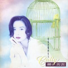 Album 容易受伤的女人/ Người Phụ Nữ Dễ Bị Tổn Thương - Quảng Mỹ Vân