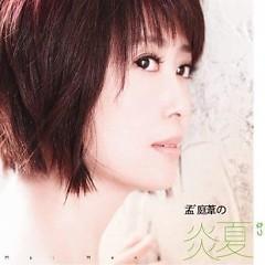 Album 孟庭苇的炎夏/ Mùa Hè Của Mạnh Đình Vi - Mạnh Đình Vi