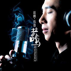 低音共鸣/ Âm Thấp Cộng Hưởng - Triệu Bằng