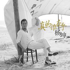 Album 真的很在乎/ Thật Sự Rất Quan Tâm - Dương Khôn
