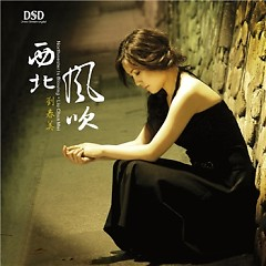 Album 西北风吹/ Gió Tây Bắc Thổi - Lưu Xuân Mỹ