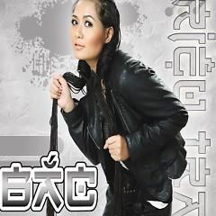 Tôi Là Cô Gái Bắc (Hip Hop CD) - Triệu Trang