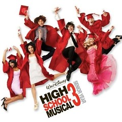 High School Musical 3 (Senior Year) - Various Artists