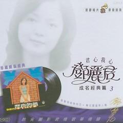 悲哀的梦/ Giấc Mộng Bi Ai (CD2) - Đặng Lệ Quân
