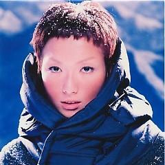 Album 听闻/ Nghe - Trịnh Tú Văn