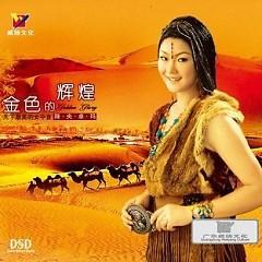 Album 金色的辉煌/ Sự Huy Hoàng Màu Vàng Kim - Giáng Ương Trác Mã