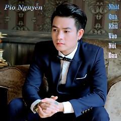 Album Nhặt Quá Khứ Vào Nỗi Đau - Pio Nguyễn